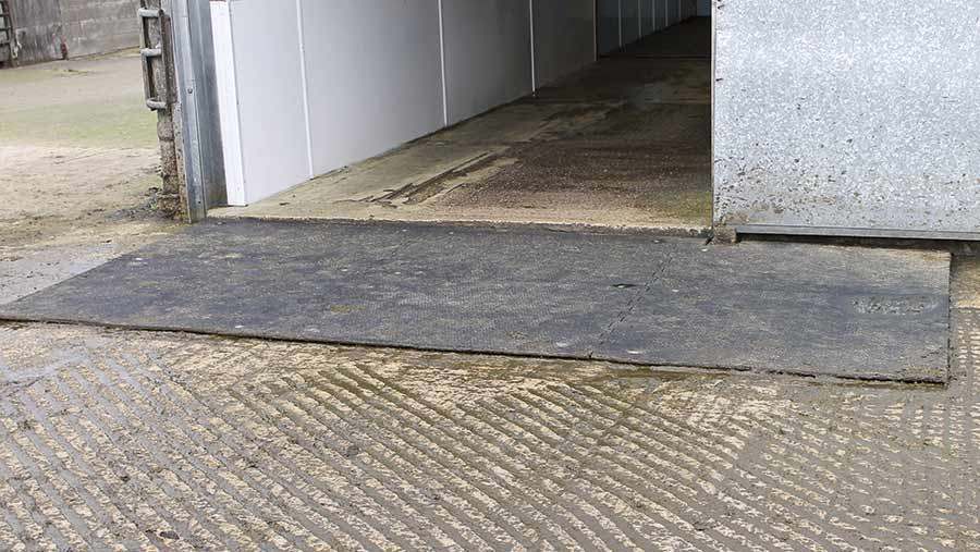 Rubber matting in a yard