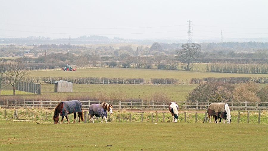 Shaun Watson's farm