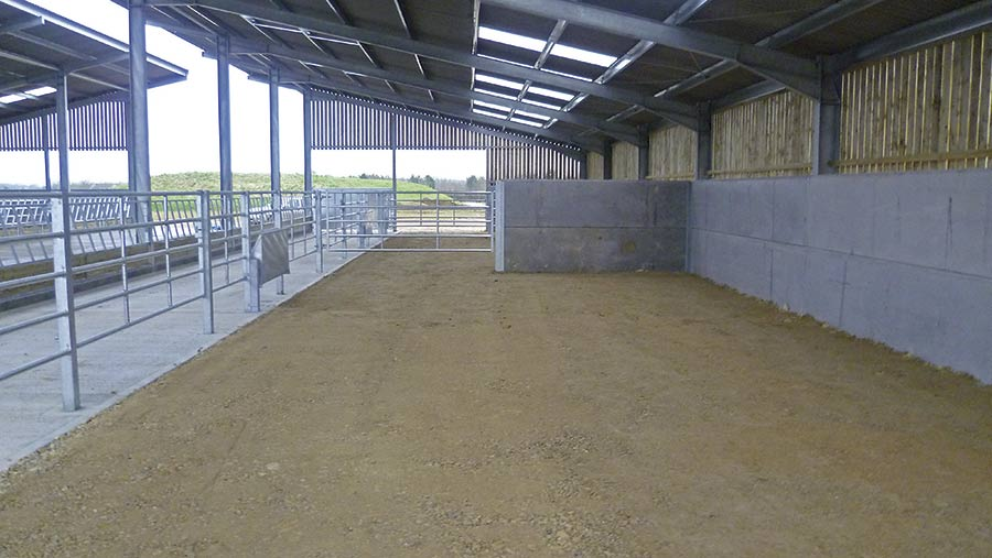 Compacted stone floor of shed