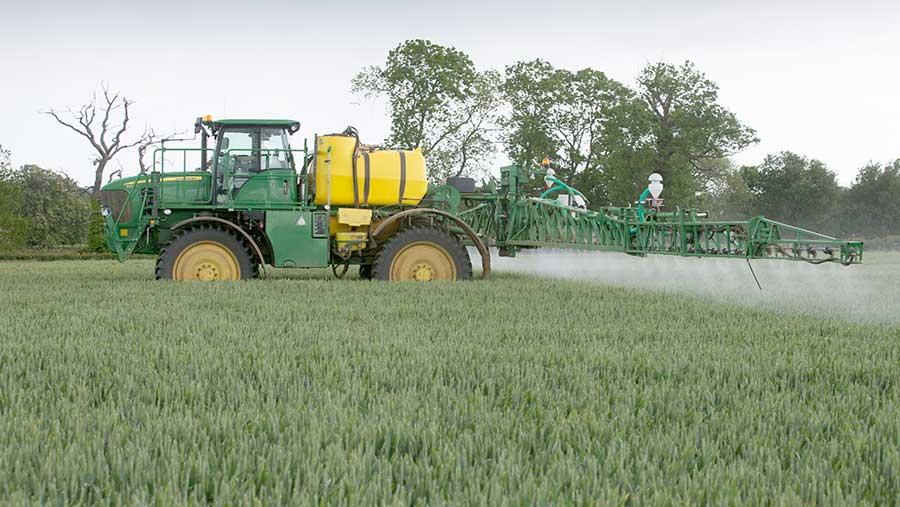 spraying wheat