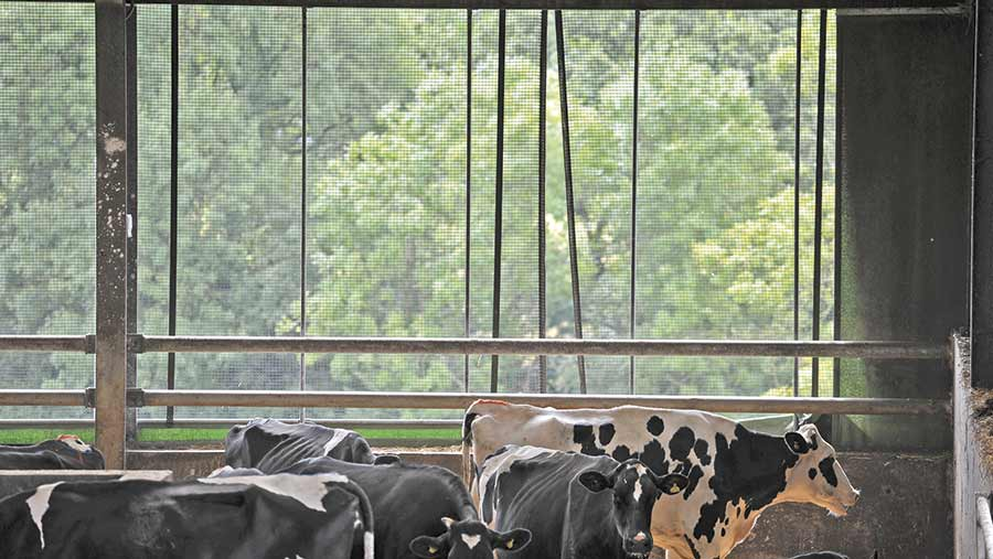 Ventilation curtains