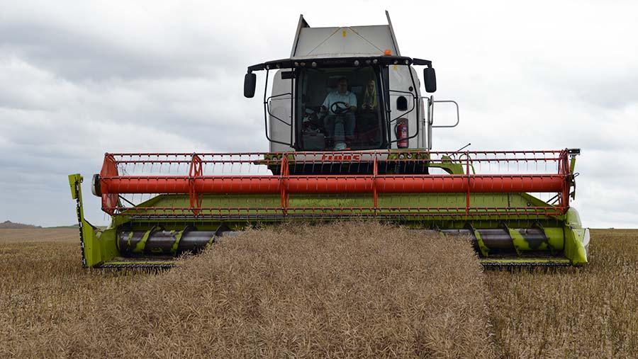 Tim Lamyman harvesting oilseed rape © David Jones