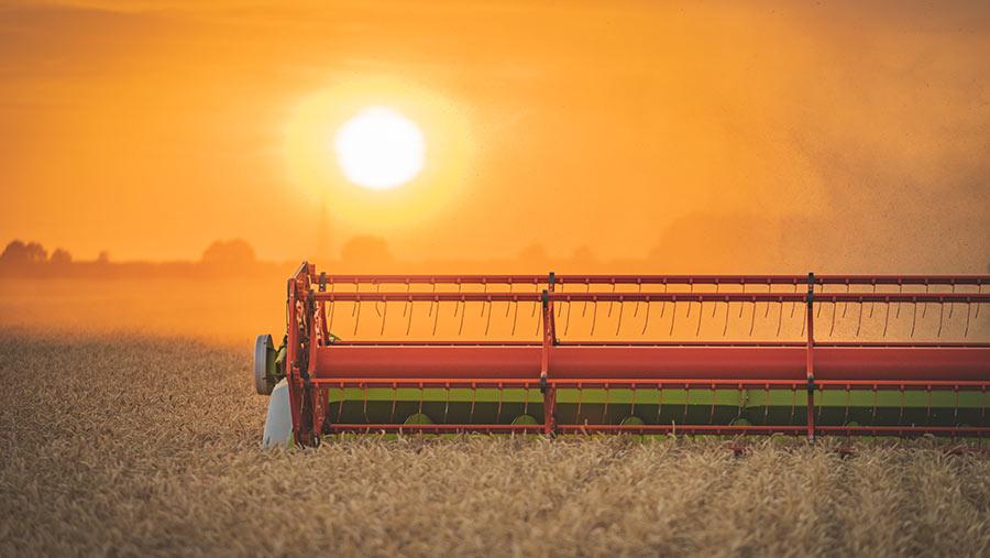 harvest-close-up-c-Alexander-Winslade