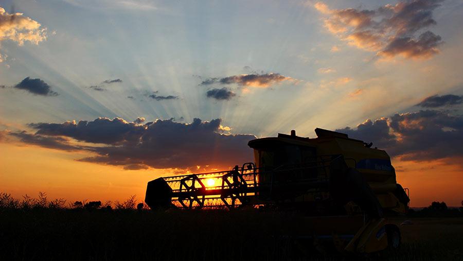 harvest-sunset-c-Heather-Ross