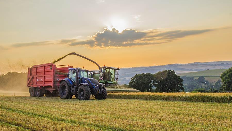 harvest-wholecrop-c-Oli-Whiteley