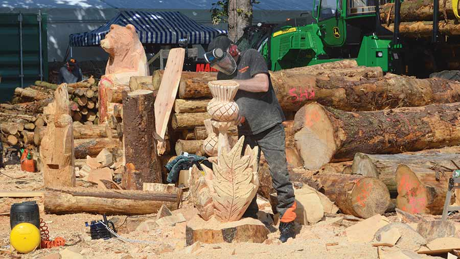 A chainsaw sculptor at work