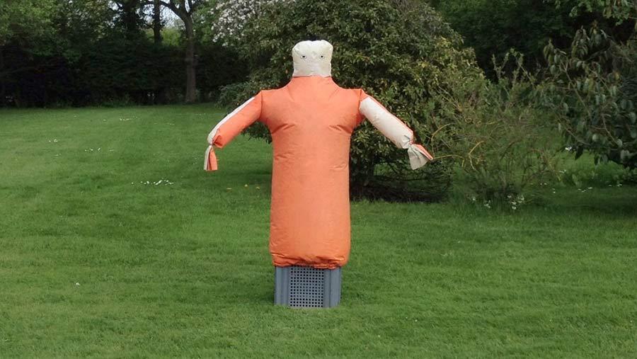 The Scarey Man birdscarer