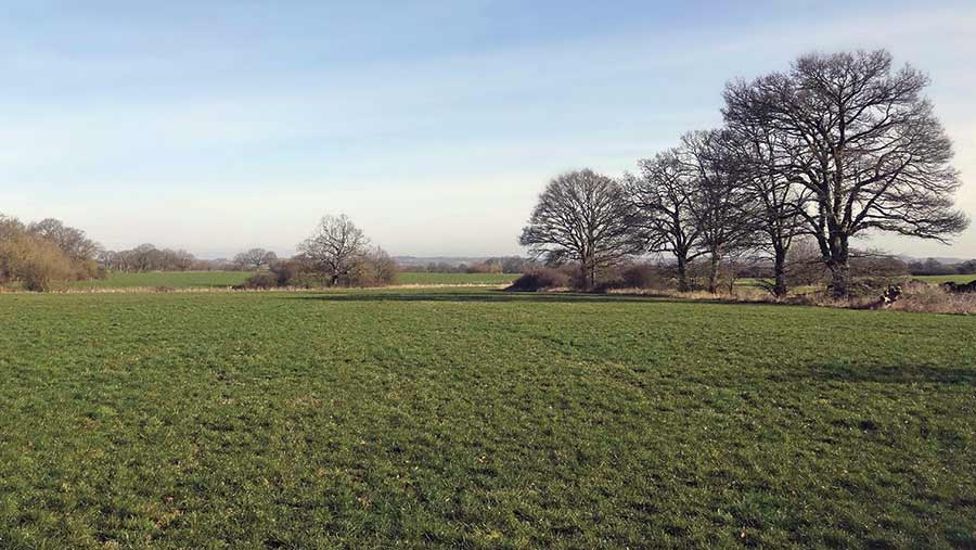 Weald of Kent
