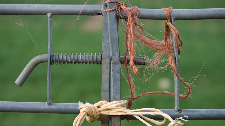 Twine on a farm gate