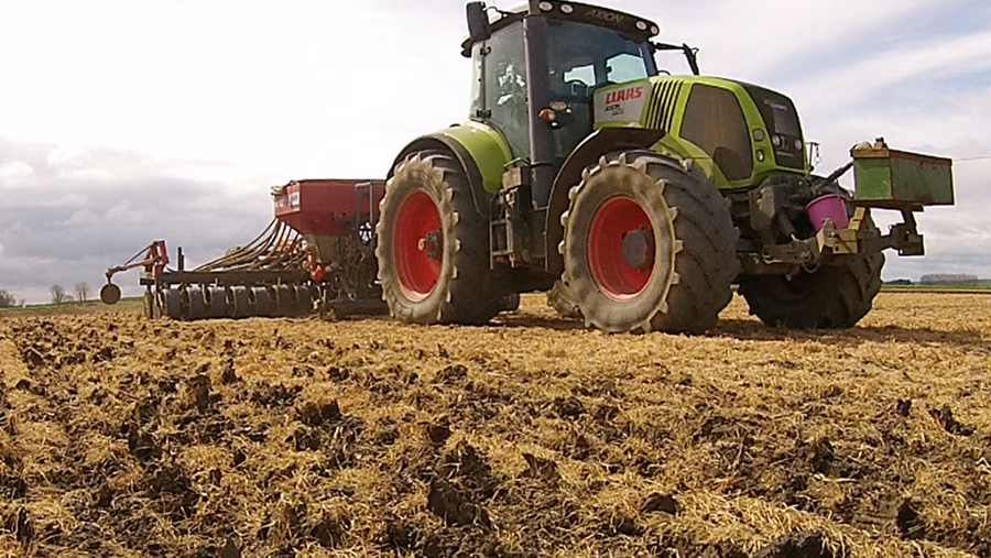 Spring barley drilling into a cover crop on the Lincolnshire Fens