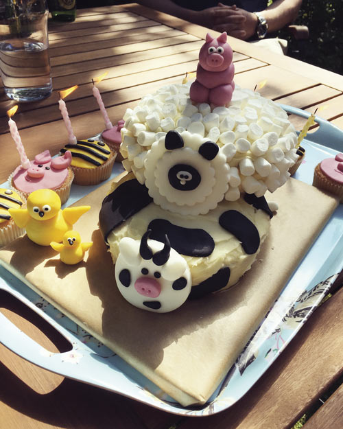 Farming cake by Amanda Vincent