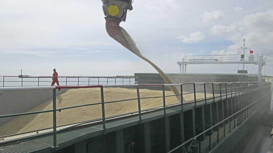 Arklow Forest grain carrier