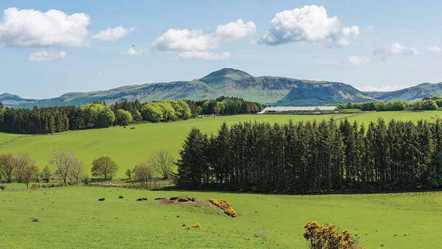 Balcanquhal-Farm-c-no-credit