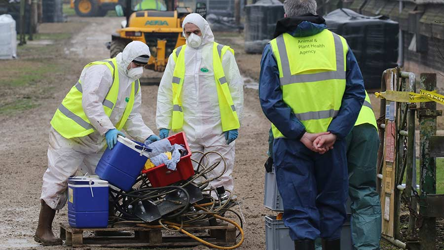 Men in biohazard overalls and with masks get equipment ready to enter a farm