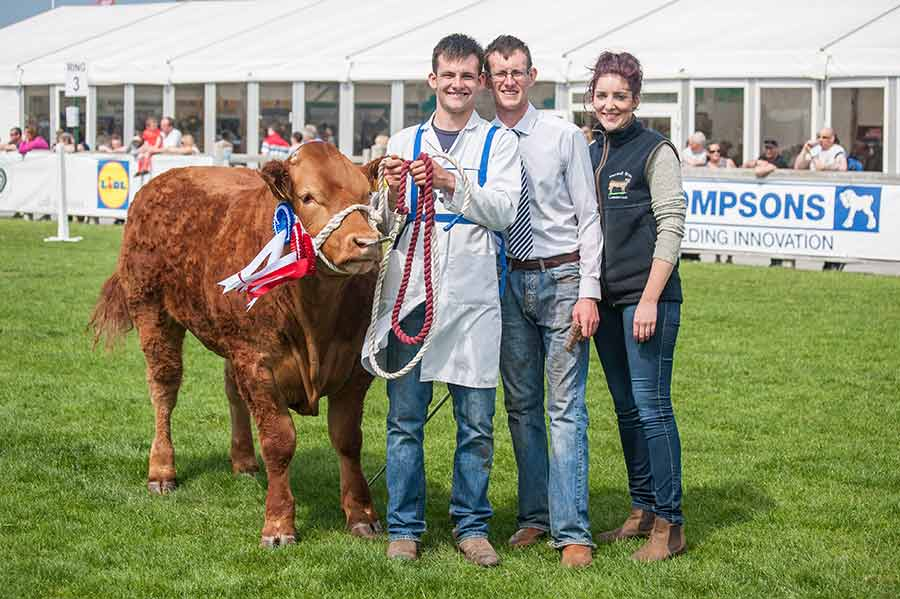 Derek and Mark Maxwell with their champion cow