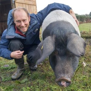 Graham Eggins with one of his Saddleback pigs