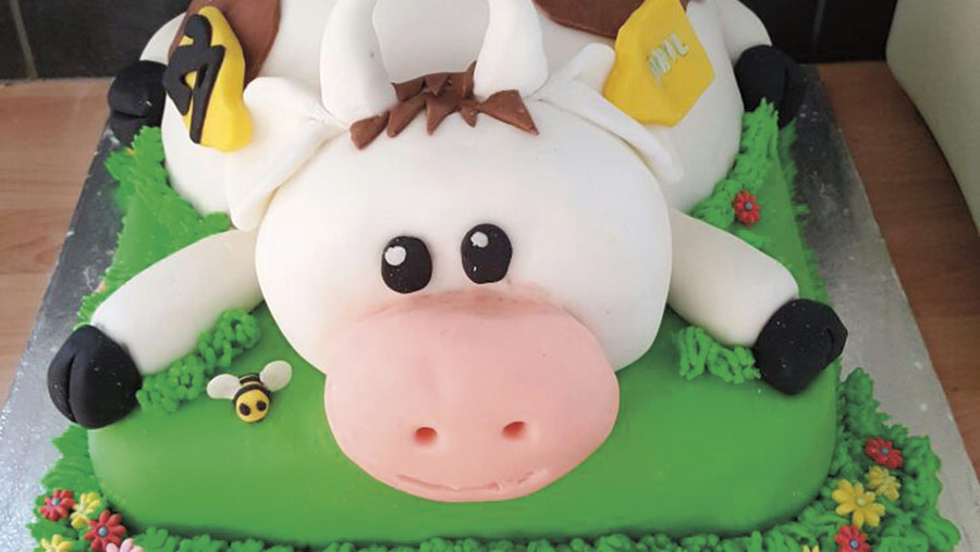 cow cake by Carly Worrell