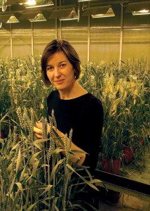 Celia-Bequain with plants in a greenhouse