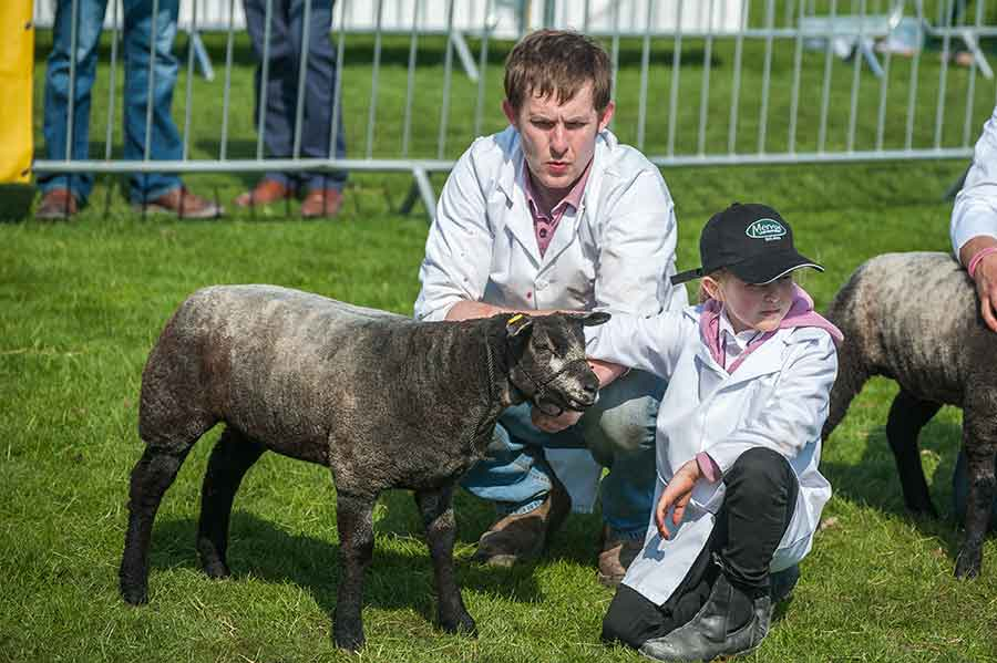 Clive Richardson with daughter Sophie from Tamlaght- Enniskillen with their First prize Blue Texel ewe lamb