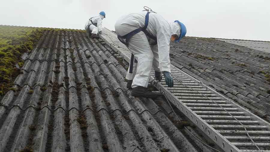 dengie crops roof