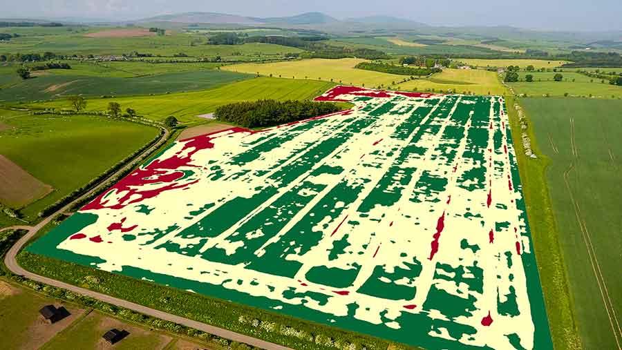 False colour map of field taken by drone