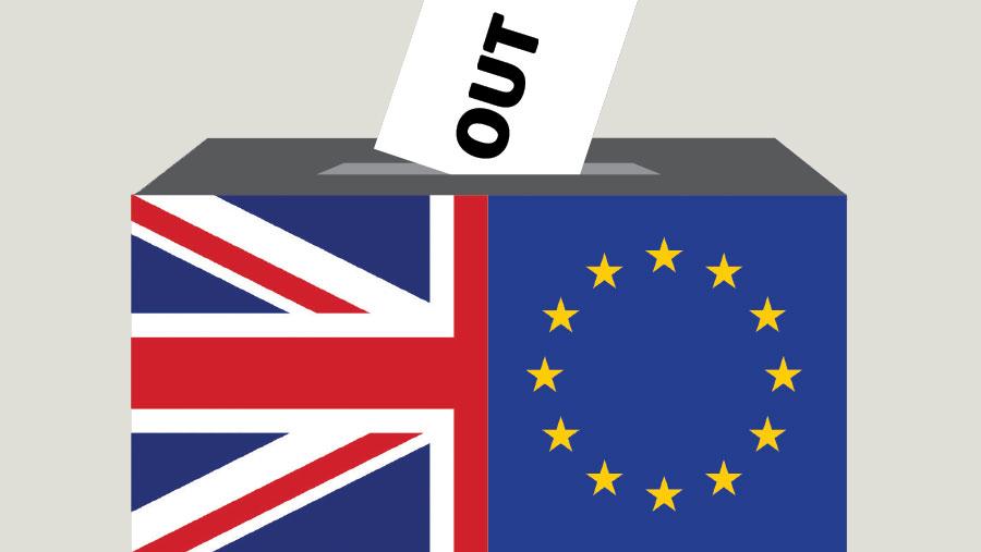 EU referendum box
