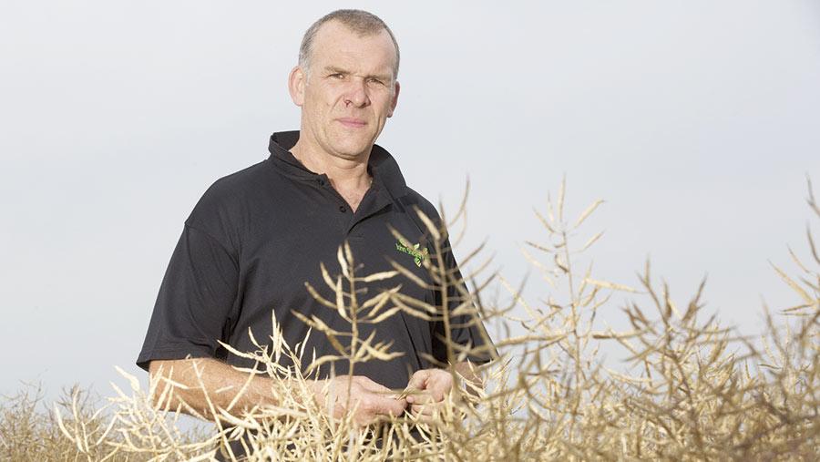 Hugh Sapsed in oilseed rape crop