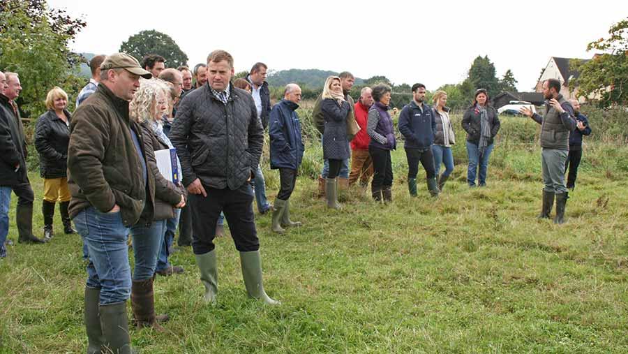 British Goose Producers' Walk