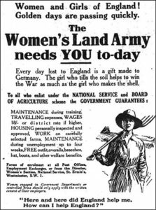 "A poster for the Women's Land Army. The headline reads: ""Women and girls of England. Golden days are passing quickly. The Women's Land Army needs you today."" It continues; ""Every day lost to England is a gift made to Germany. The girl who tills the soil helps to win the war as much as the girl who makes the shell. To all who enlist under the National Service and Board of Agriculture scheme the government guarantees: maintenance during training, travelling expenses, wages 18/- or district rate if higher, housing personally inspected and approved, work on carefully selected farms, maintenance during unemployment up to four weeks, free outfit, overalls, breeches, hat, boot and other welfare benefits."""