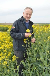 Geoff Hall standing in a crop of oilseed rape