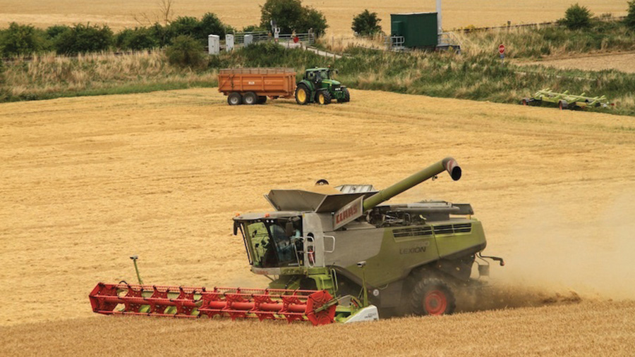Combines harvesting in a field