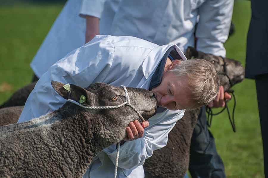 Janet Carson kissing a sheep