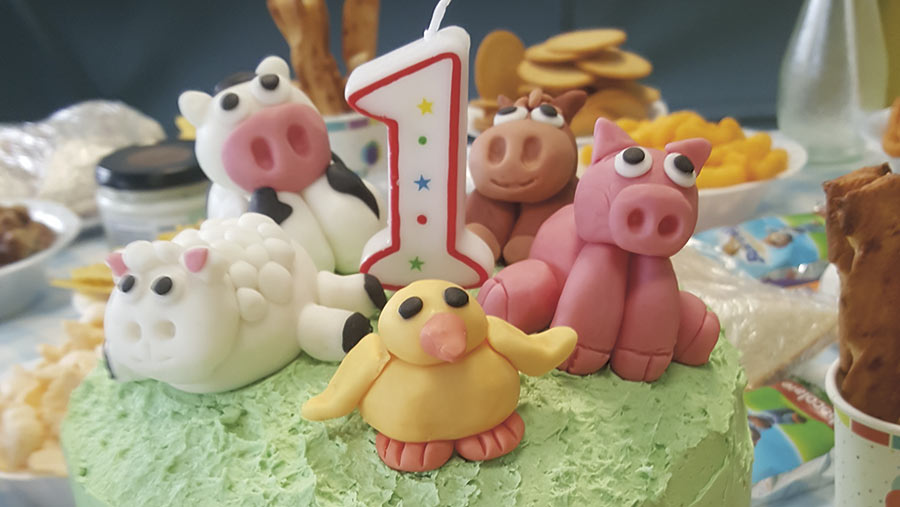 livestock cake by Lucy Babb
