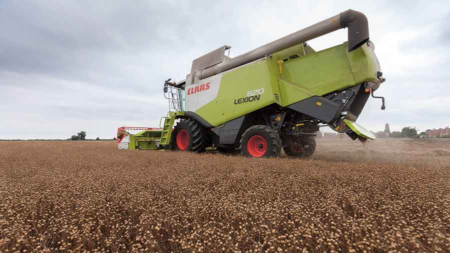 Linseed being harvested