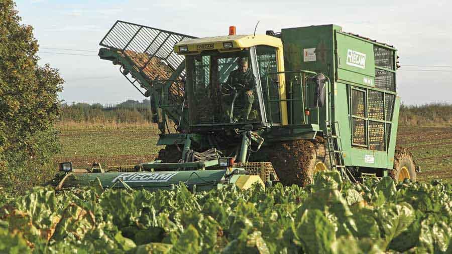 beet-harvester
