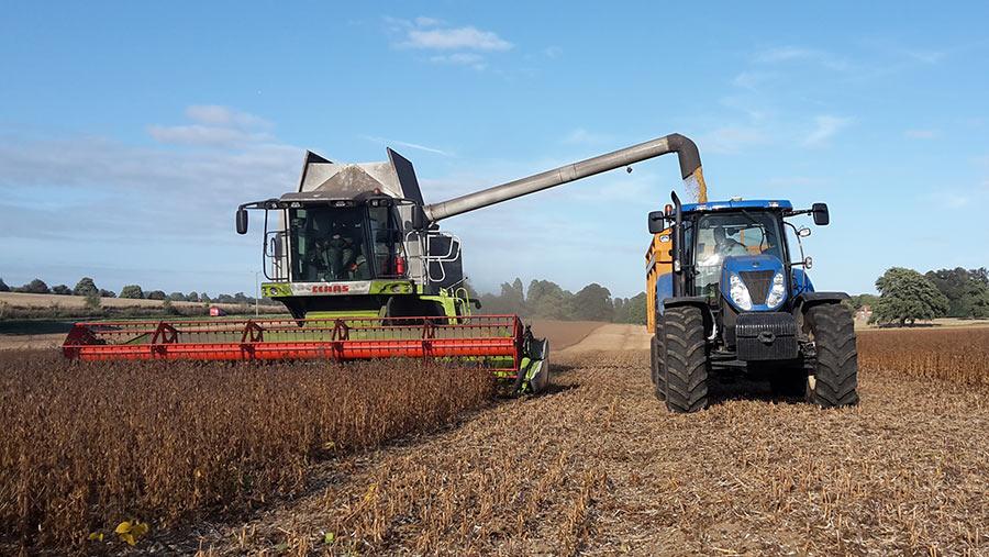 Mark Izard combining his first soya crop in Kent