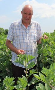 Suffolk grower Michael Craske