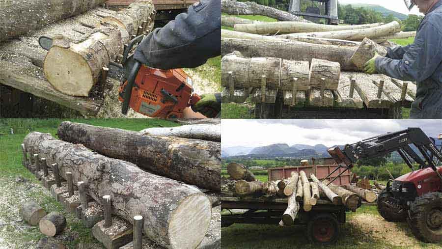 rob-smith-logging-trailer
