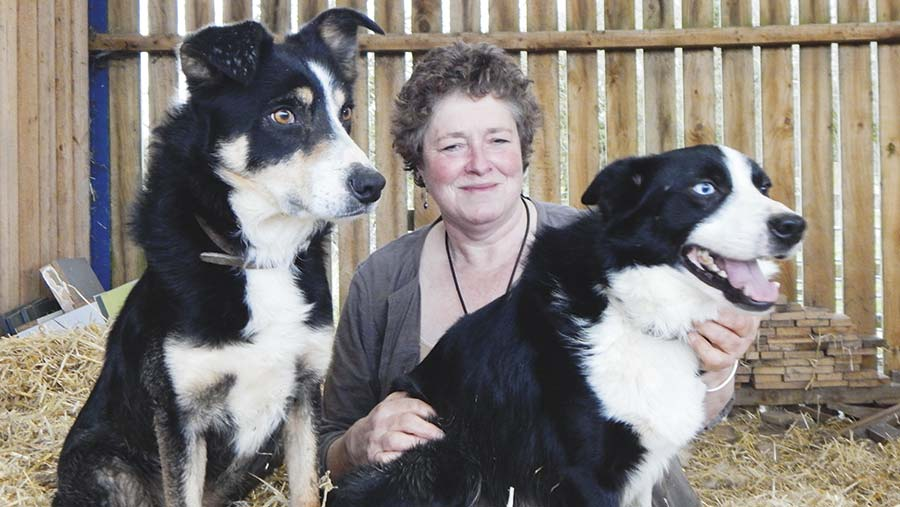 Sarah Jenkins with two dogs