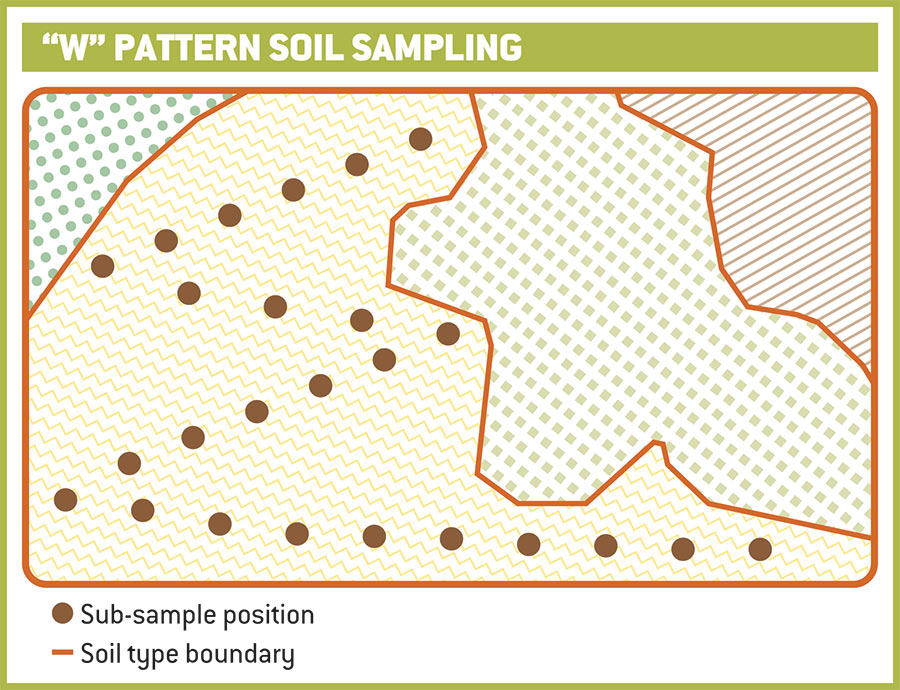Diagram of how to sample soils in a W pattern