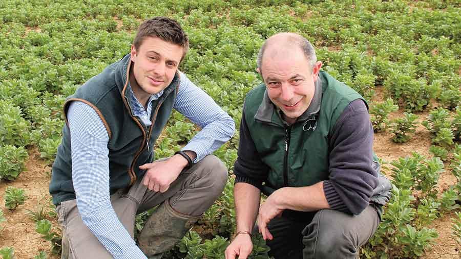 Todd Jex (left) and Mark Moderski inspect their winter bean break