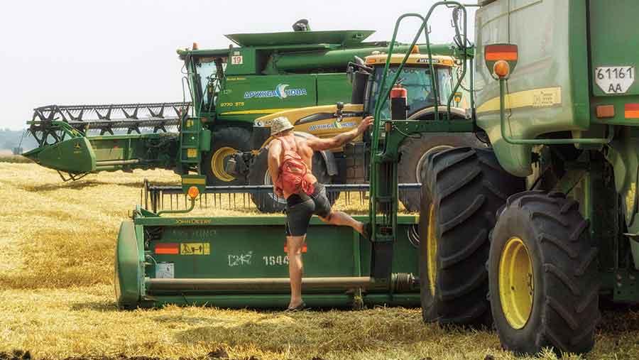 Harvest in Ukraine