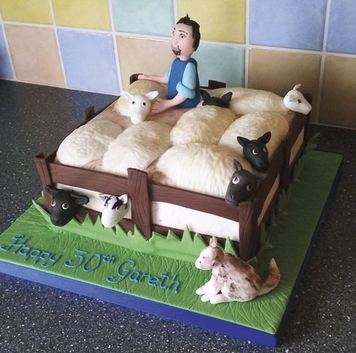 Sheep in fold cake by Victoria Davies