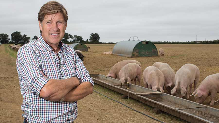 Steve Hart with pigs eating from trough