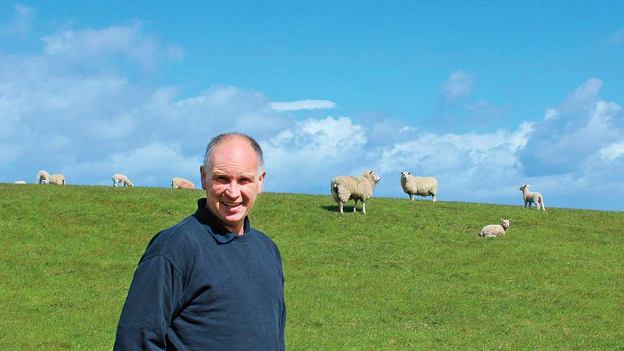 Willie Harper in a field with sheep
