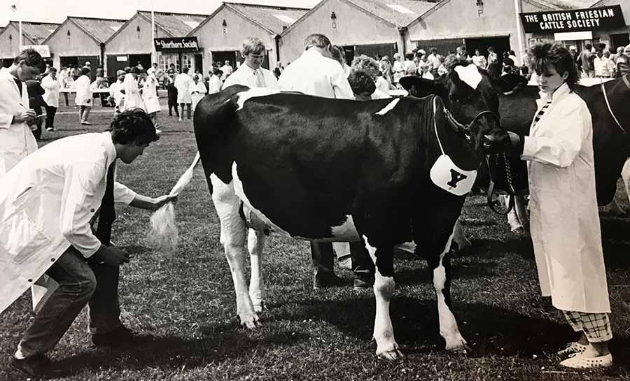 Dairy judging 1987