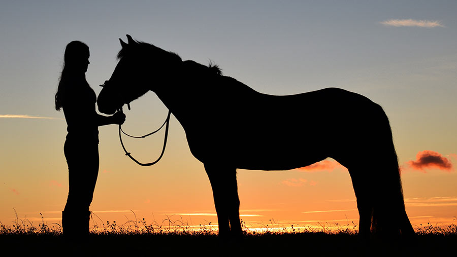 Silhouette of horse and owner in front of sunrise