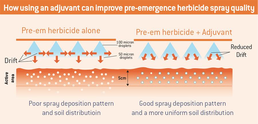 Pre-emergence diagram
