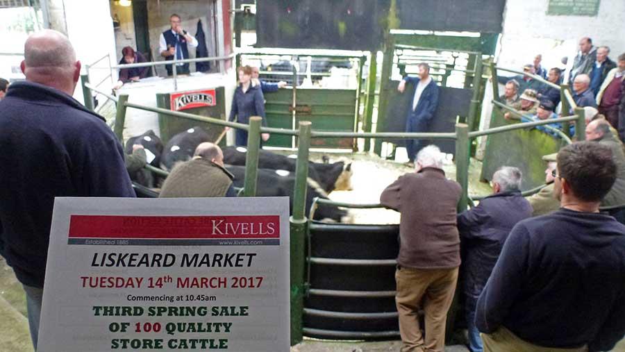 Liskeard market