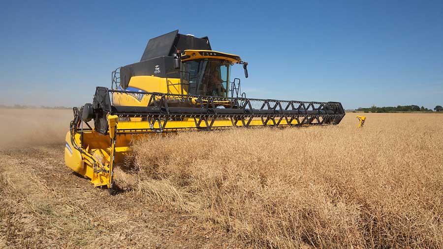 Oilseed rape being harvested